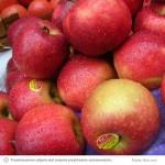 naklejki-na-jablka